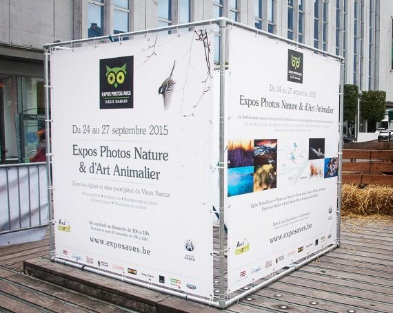 Expos Photos Aves 2015