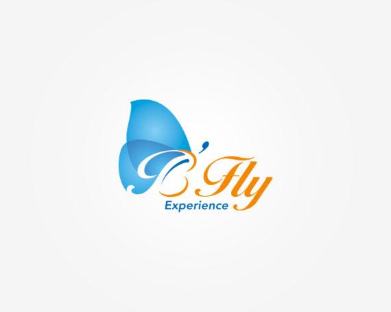 B'Fly experience